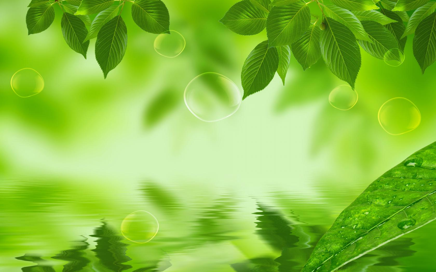 Charming-Green-Nature-Desktop-Backgrounds